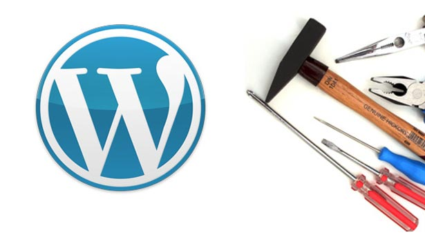wordpress-error-fixing