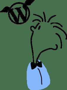 WordPress Developer Ireland – WordPress Migrations
